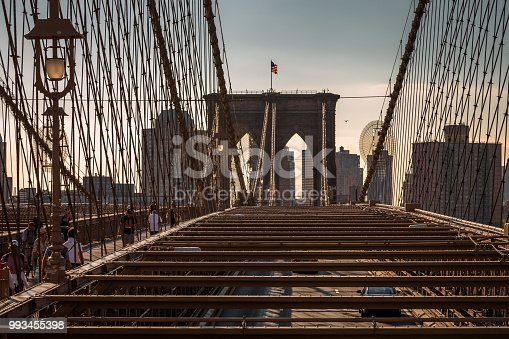 496266816 istock photo View from the Brooklyn Bridge 993455398