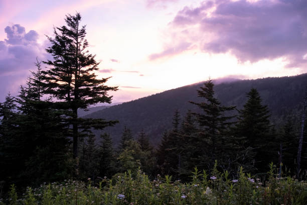 View from the Clingmans Dome Parking Lot stock photo