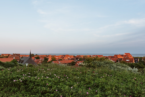 View from the dunes towards the main village on the north sea island Juist, East Frisia, Germany, Europe, in evening light.