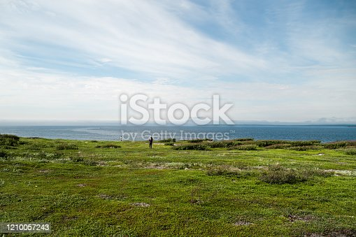 View from the green meadow to the Barents sea in the arctic tundra