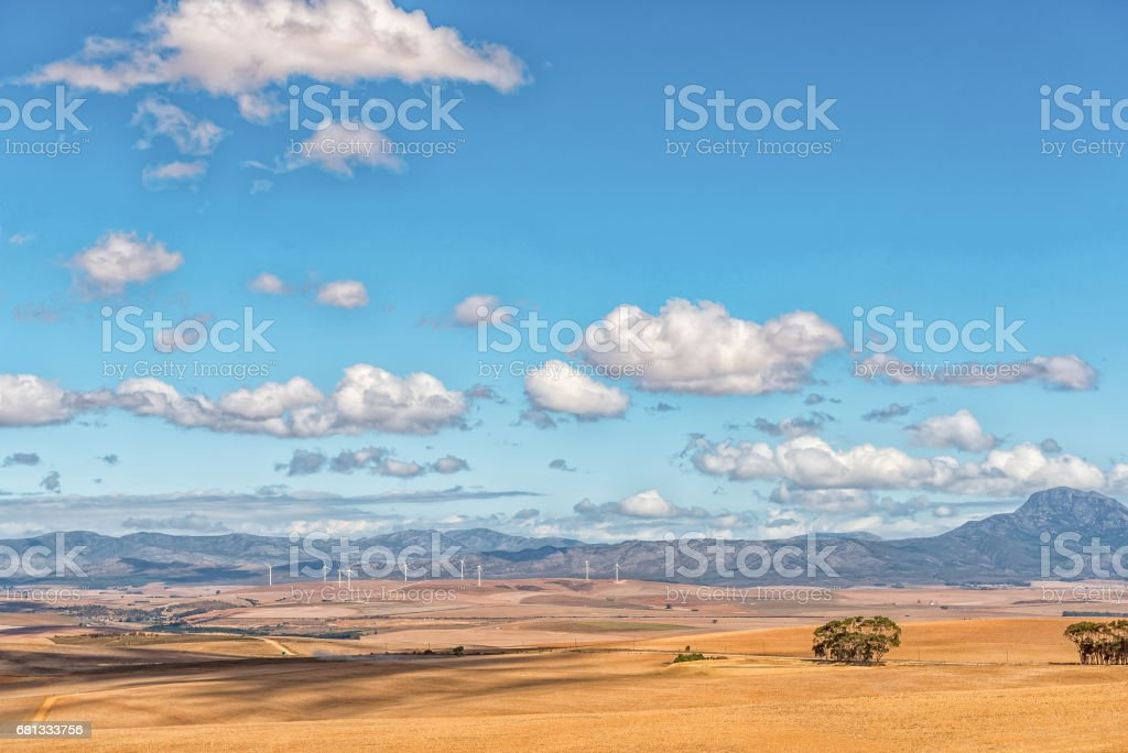 View from the Middelplaas Road towards wind-farm at Caledon stock photo