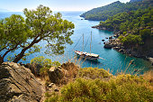 istock View from the mountain to the blue clean water of Mediterranean Sea with yacht, rocky mountain slopes with pine-trees forest and grass in front 1311353497