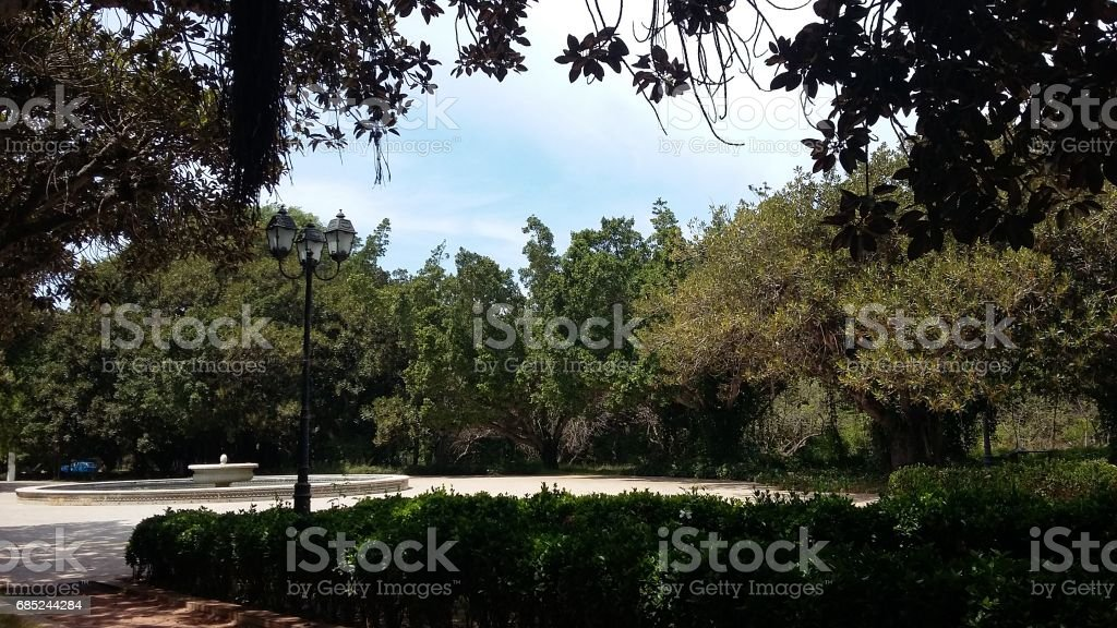A view from the park foto de stock royalty-free