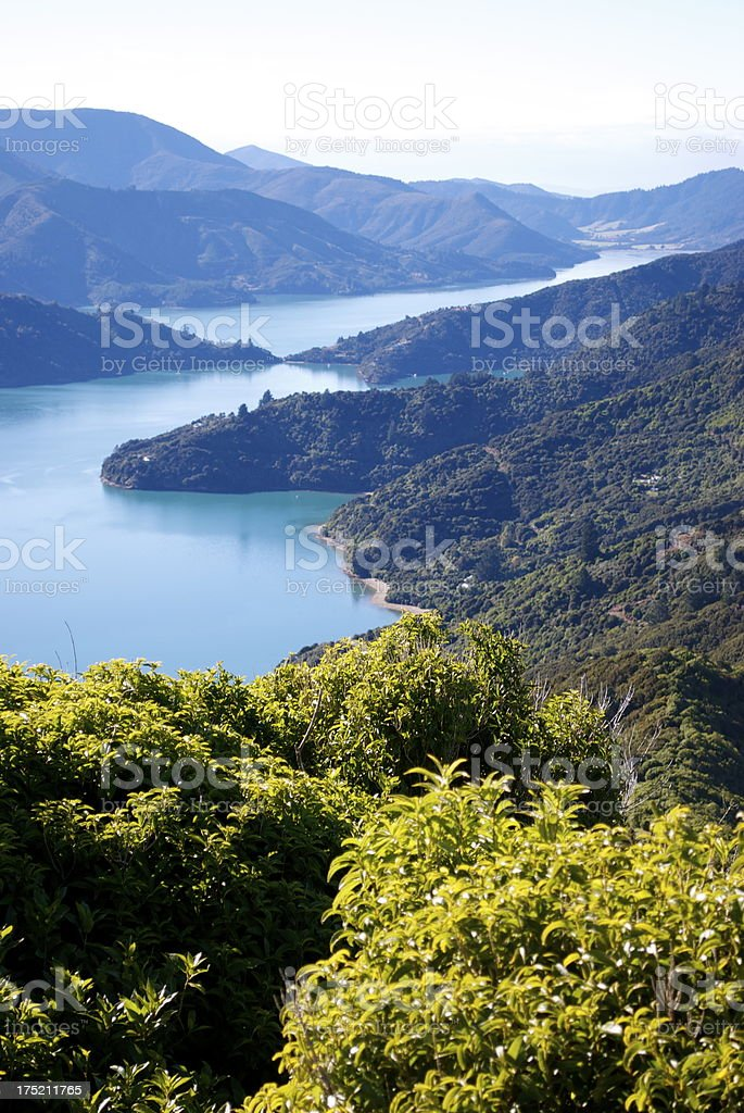 View from the Queen Charlotte Track, Marlborough, NZ stock photo