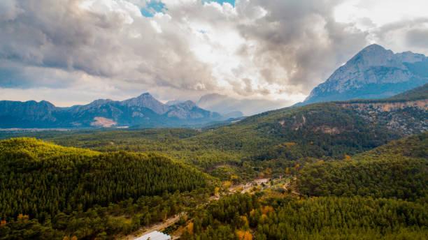 Aussicht vom Gipfel des Waldes – Foto