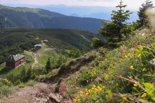 View from Toaca peak, Ceahlau mountains, Romania stock photo