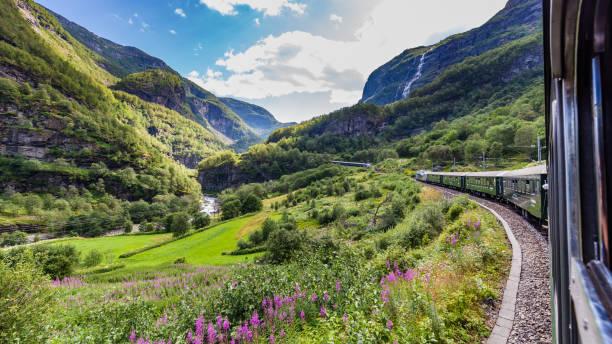 view from train flamsbana - norvegia foto e immagini stock