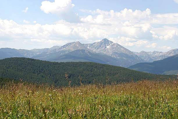 View from Vail Mountain  bunnylady stock pictures, royalty-free photos & images