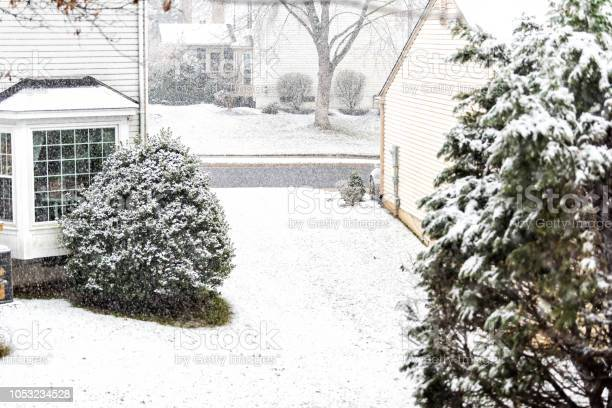 Photo of View from window on snowstorm, storm, snowing weather outside, outdoors with tree branches covered in snow in backyard, front yard with houses, road, street in Fairfax, Virginia