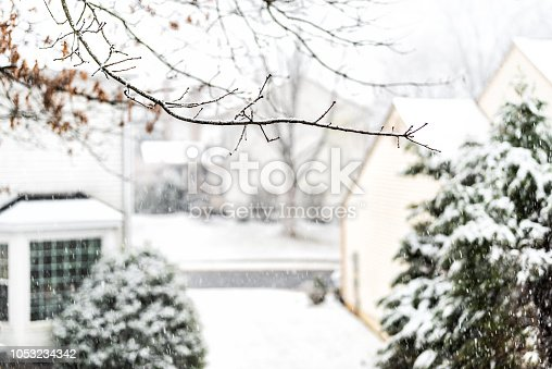 View from window on snowstorm, storm, snowing weather with tree branches covered in snow in backyard, front yard with houses, road, street, residential neighborhood in Fairfax, Virginia