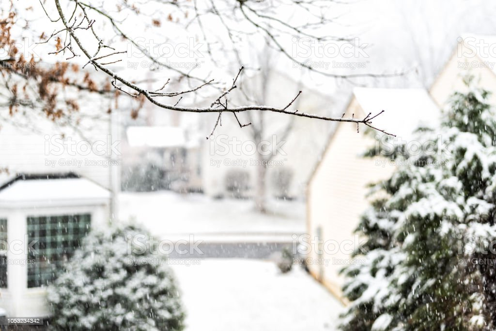 View from window on snowstorm, storm, snowing weather with tree branches covered in snow in backyard, front yard with houses, road, street, residential neighborhood in Fairfax, Virginia stock photo