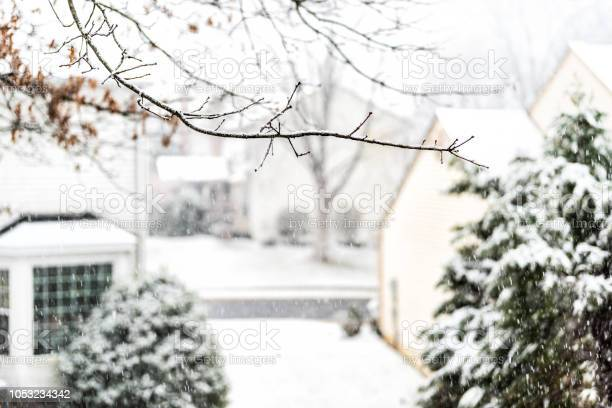 Photo of View from window on snowstorm, storm, snowing weather with tree branches covered in snow in backyard, front yard with houses, road, street, residential neighborhood in Fairfax, Virginia