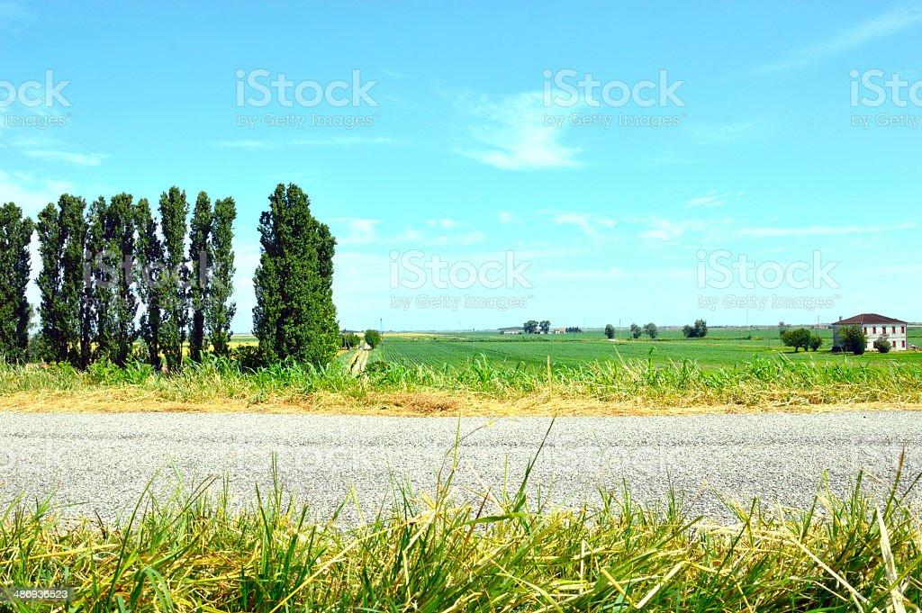 view hills Delta del Po, Rovigo, Veneto, Italy royalty-free stock photo
