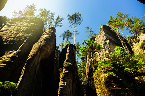 istock View in Adrspach Rocks, Czech 1190803423