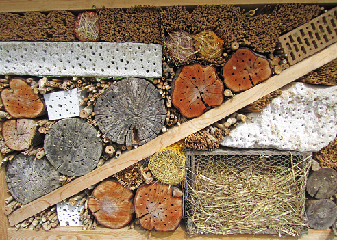 view into an insect hotel