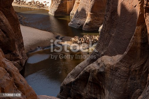 View into the legendary Guelta d'Archeï, the mystic spring of water inside the remote Ennedi Mountains in the Sahara desert, North-East Chad. This place is since centuries one of the main sources of water for the Tubu people and their camel herds. The Ennedi massif was declared as an UNESCO World Heritage site in 2016.