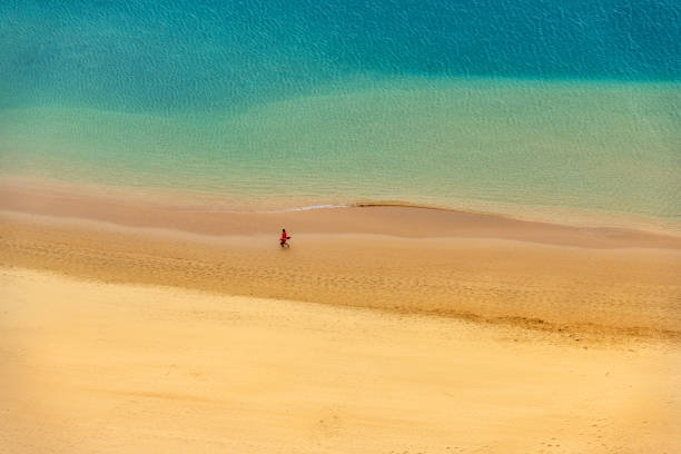 View of a beautiful Beach Aerial View,Tenerife,Spain stock photo