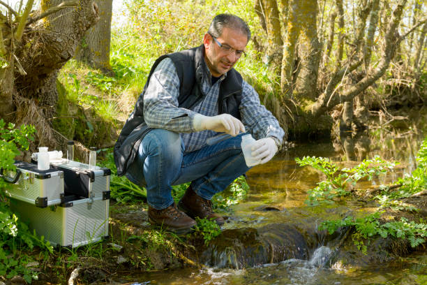view of a biologist take a sample in a river. - wildlife conservation stock photos and pictures