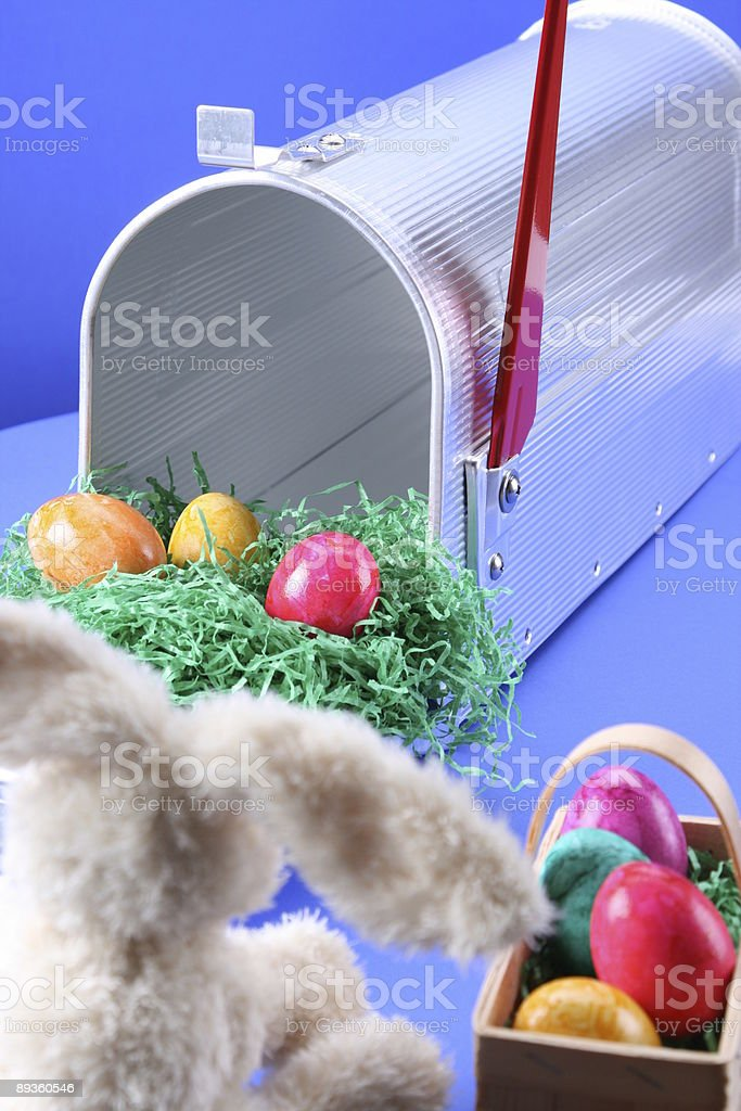 View of a Bunny royalty-free stock photo