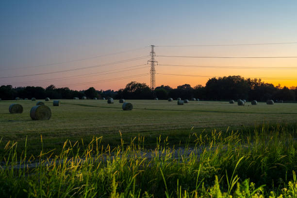A view of a field with haystacks during nighttime stock photo