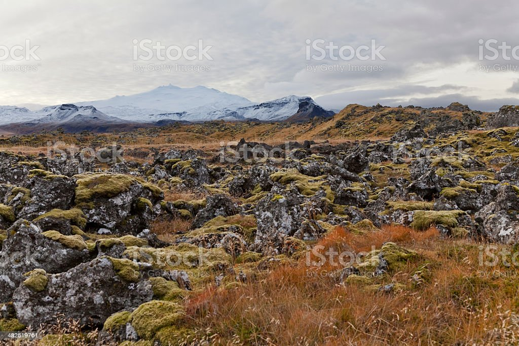View of a field with Snaefellsjokul volcano at the back stock photo