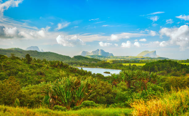 View of a lake and mountains. Mauritius. Panorama