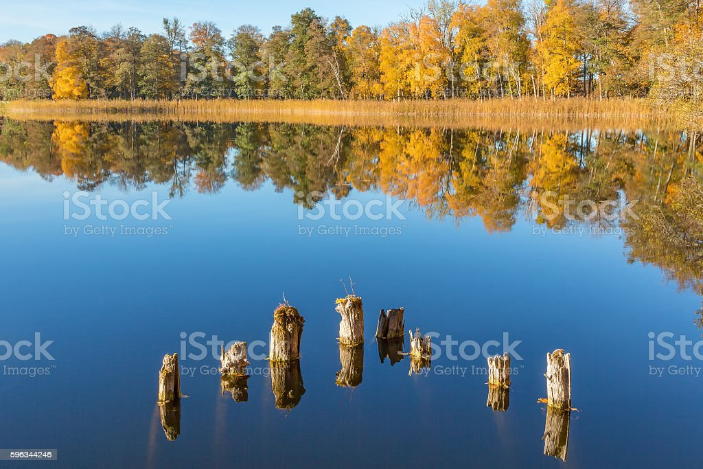 View of a lake with deciduous forest in autumn colors Lizenzfreies stock-foto