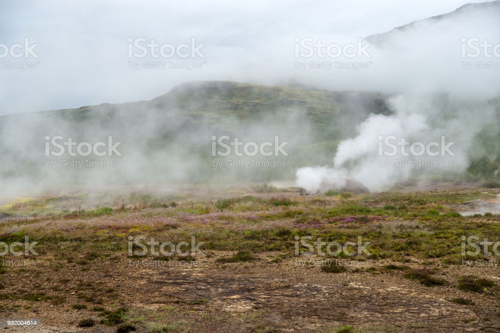 View of a Meadow with Steaming Hot Springs, Haukadalur Valley,...