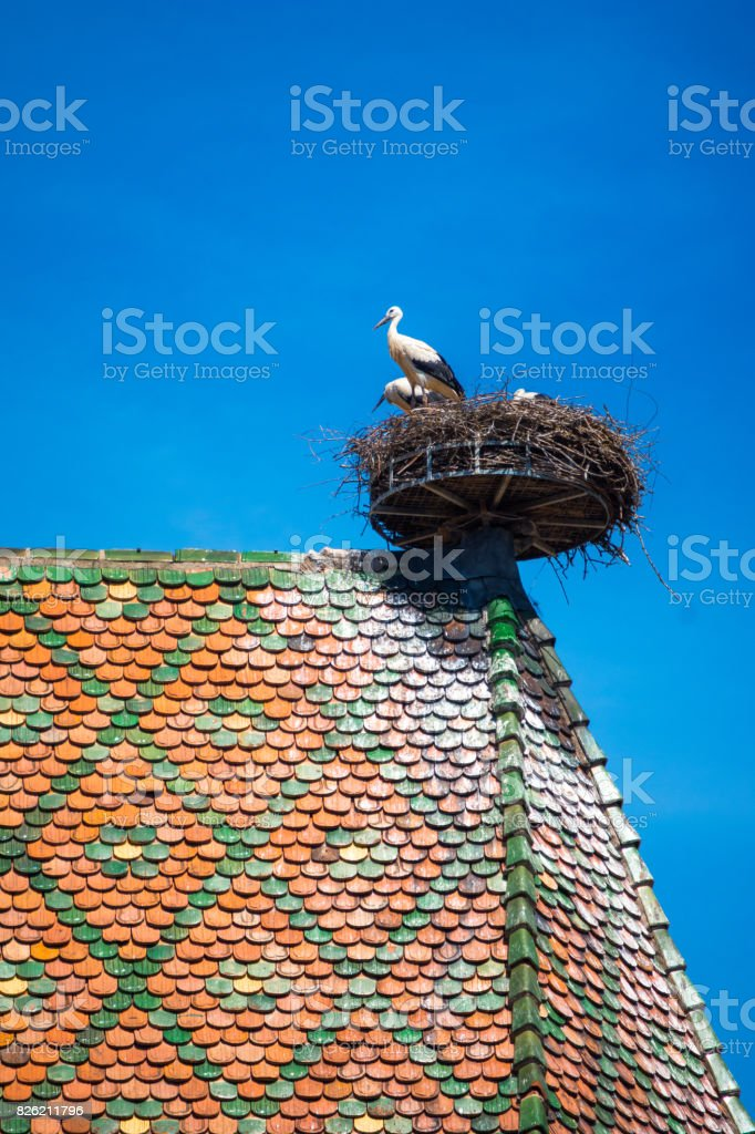 View of a nest of storks on the roof, Colmar, Alsace, France - foto stock