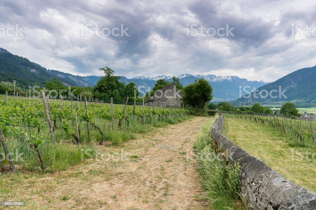 소박한 돌 별장의 보기의 전경과 산 풍경 뒤의 좋은 보기에 바위 벽을 따라 실행 흔적으로 포도 원에 가운데 - 로열티 프리 건축물 스톡 사진