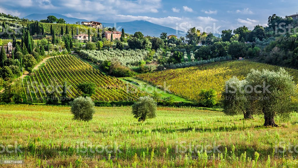 View of a small village in Tuscany stock photo