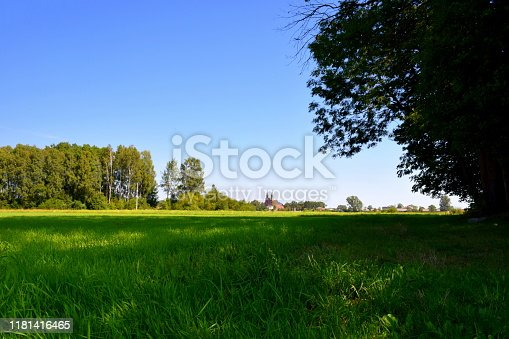 A view of a vast overgrown meadow, pastureland, or field with grass, herbs, plants, and shrubs growing everywhere and an old rural rustic Catholic church visible in the distance near the horizon