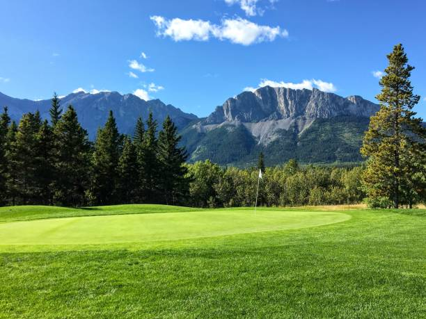 A view of a well manicured golf green with trees and the rocky mountains in the background.  It is a beautiful sunny day playing golf in Kananaskis. A view of a well manicured golf green with trees and the rocky mountains in the background.  It is a beautiful sunny day playing golf in Kananaskis. kananaskis country stock pictures, royalty-free photos & images