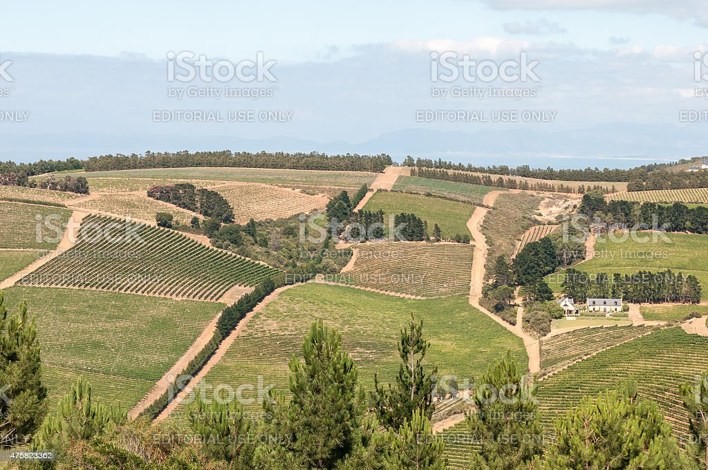 View of a wine farm near Sir Lowrys Pass stock photo