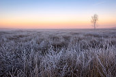 istock View of a winter landscape in the morning during sunrise 811816556