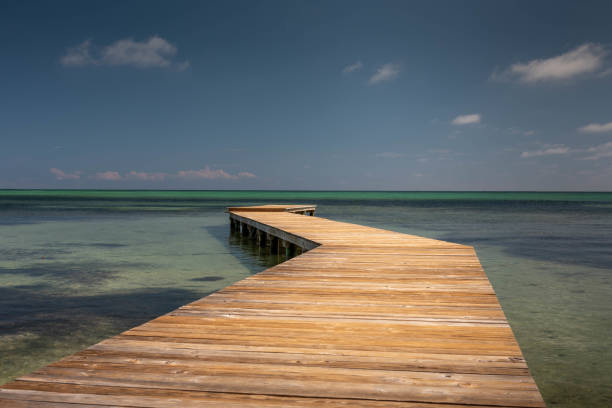 A view of a wooden dock leading into the horizon.