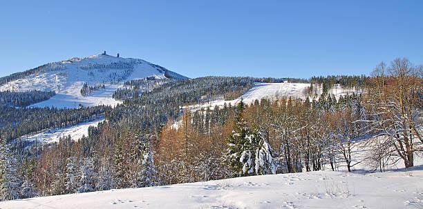 view of arber mountain in bavarian forest,germany - bayerischer wald bildbanksfoton och bilder