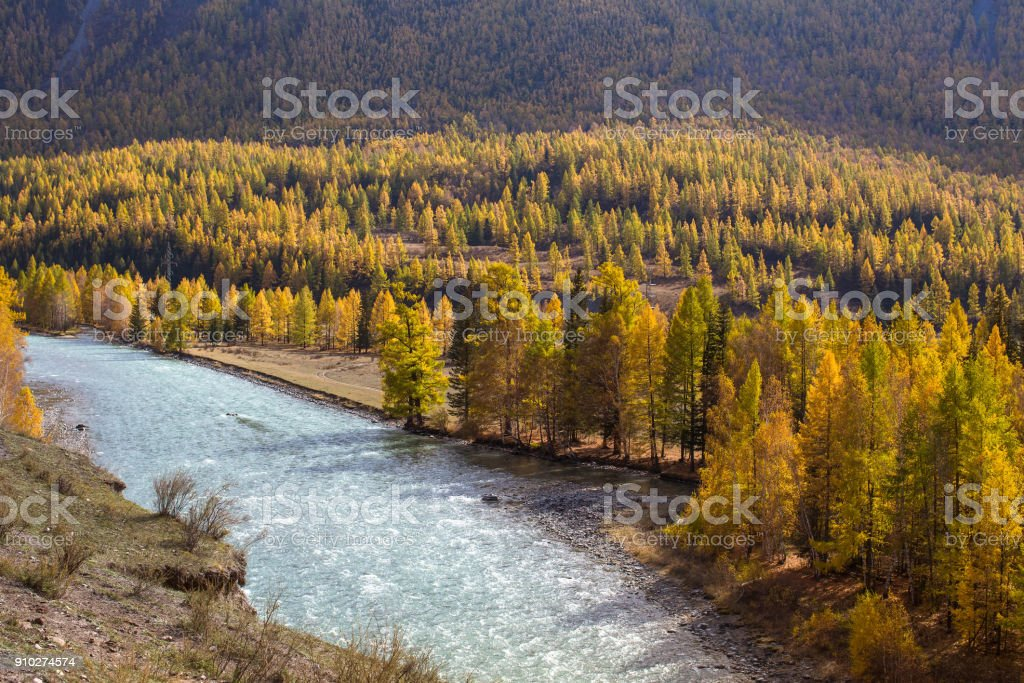 View of atun River at autumn, Altai Republic, Russia. stock photo
