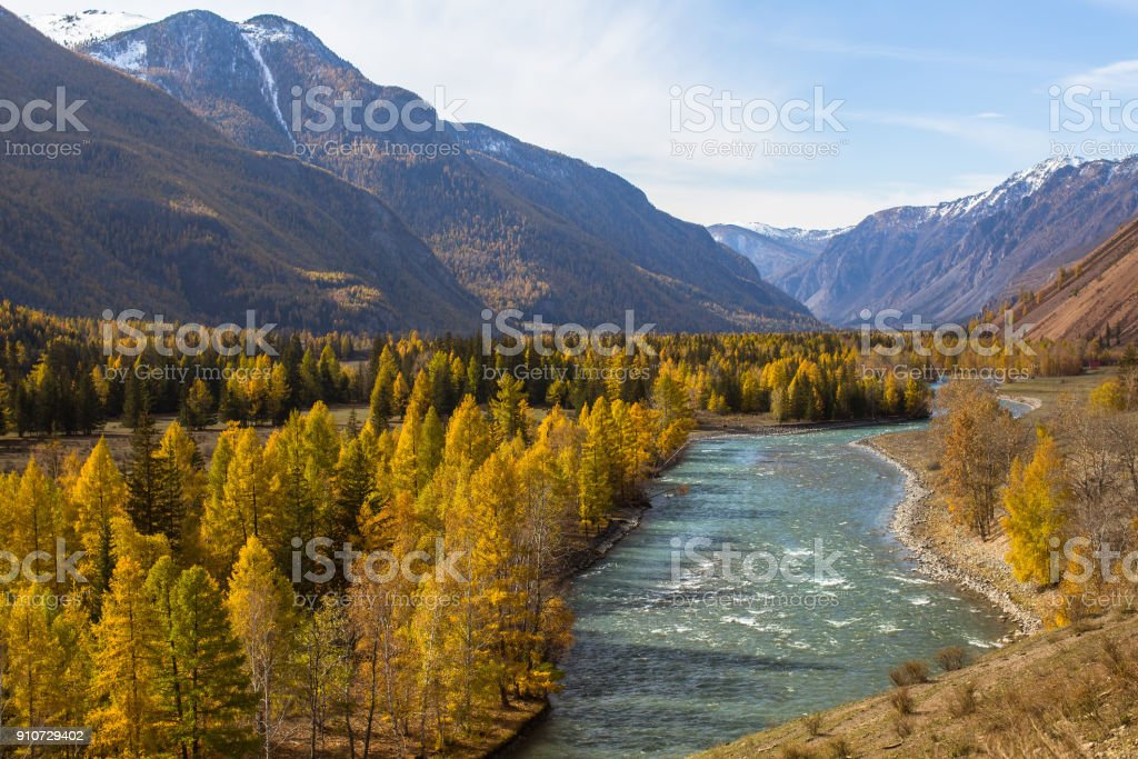 View of atun River at autumn in Altai Republic, Russia. stock photo