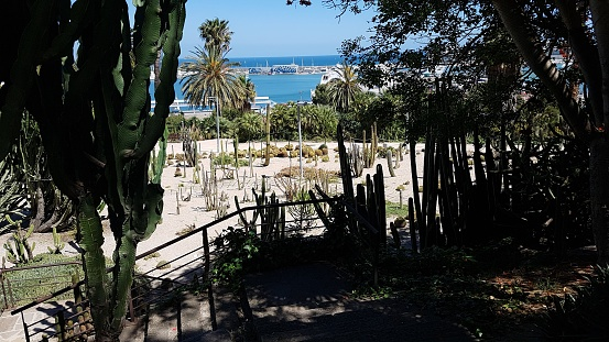 view of Barcelona from cactus park