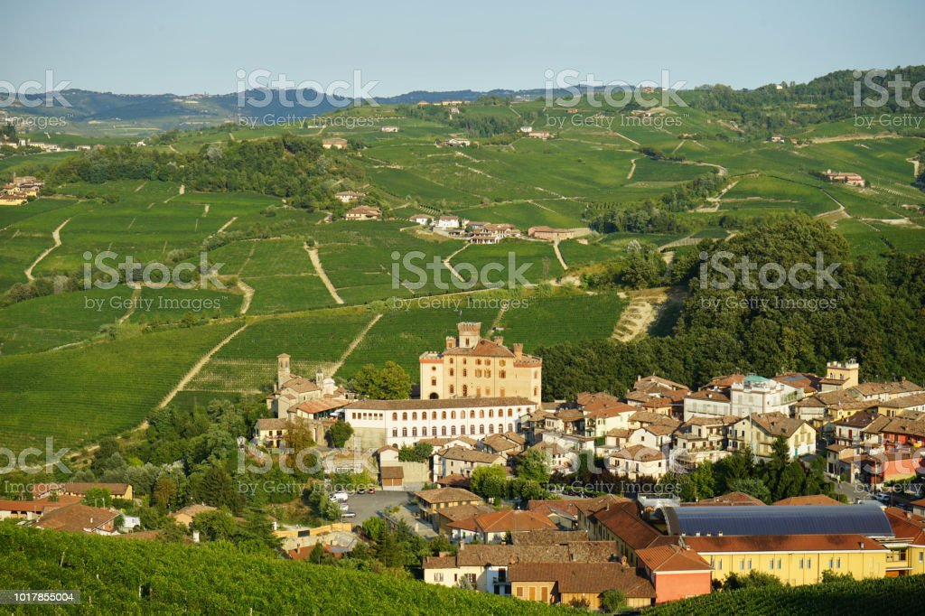 View of Barolo in Langhe Hills - foto stock