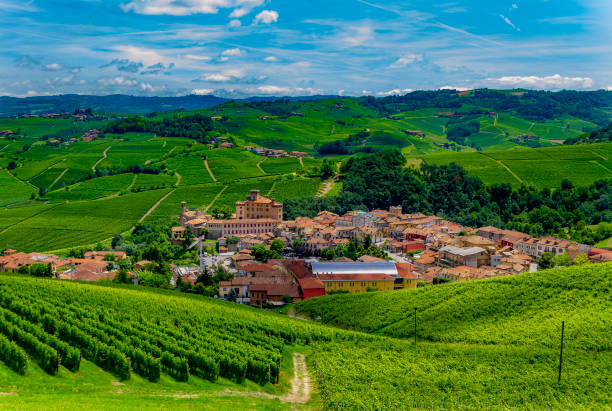 View of Barolo (Cuneo, Piedmont, Italy). stock photo