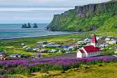istock View of basalt stacks Reynisdrangar, black sand beach near Vik and violet lupine flowers and lonely church, South Iceland, summer time 1225587414