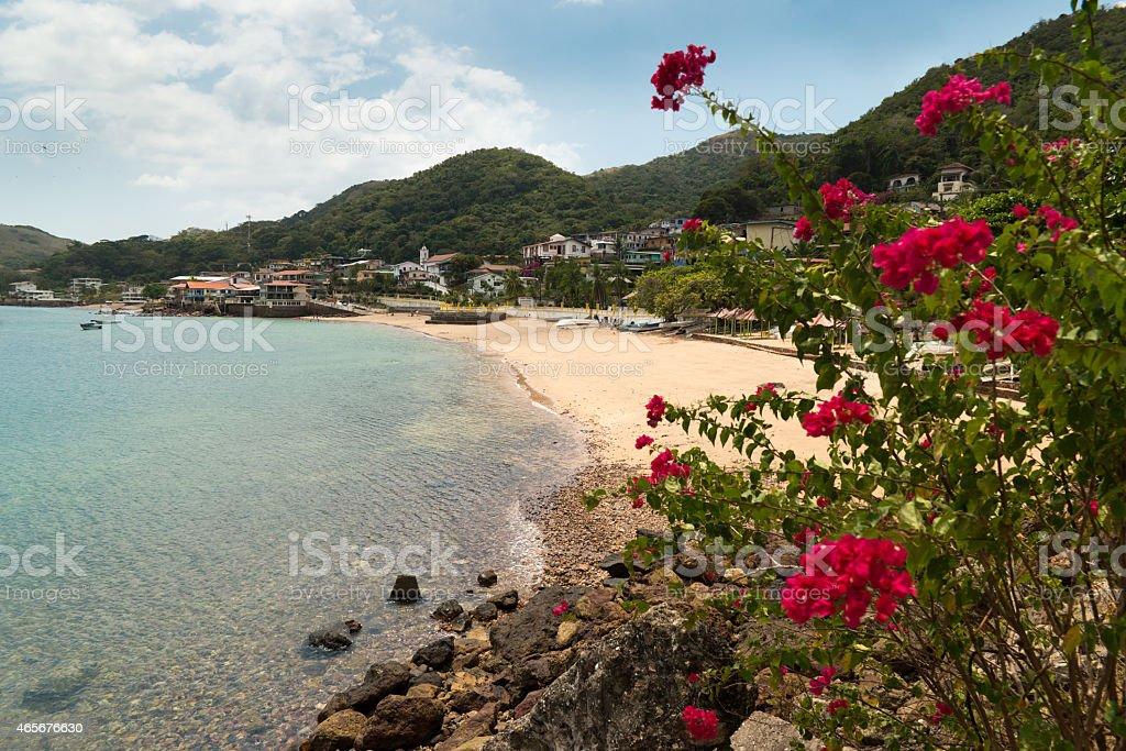 View of beach and flowers of Isla Taboga Panama City stock photo
