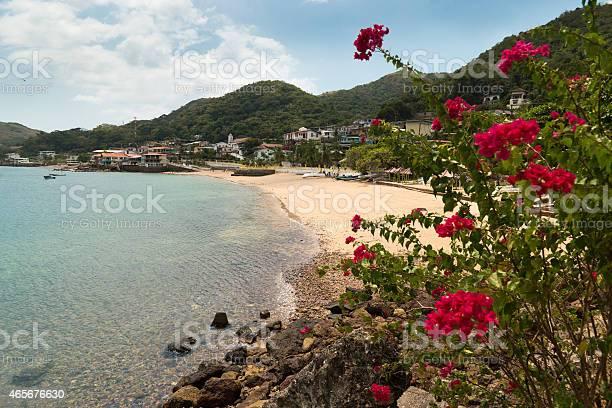 Blick Auf Den Strand Und Blumen Der Insel Taboga Panama City Stockfoto und mehr Bilder von 2015