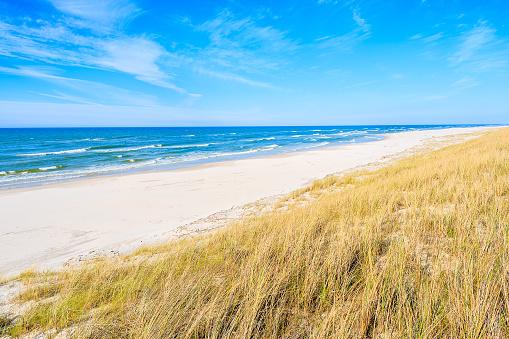 A view of beautiful beach grass on sand dune at Baltic Sea, Bialogora coastal village, Poland