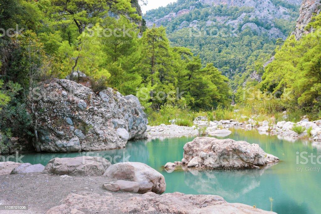 Vista da bela lagoa pequena no desfiladeiro entre verdes montanhas arborizadas. - foto de acervo