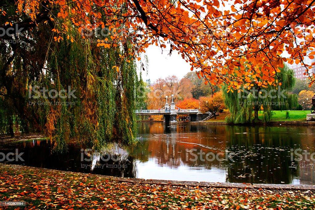 View of Boston Public Garden's lake in Autumn  stock photo