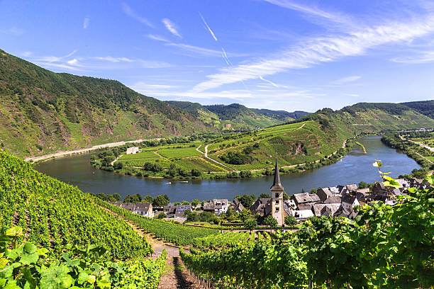 View of Bremm at the Mosel with Moselschleife View of Bremm at the Mosel with Moselschleife grand est stock pictures, royalty-free photos & images