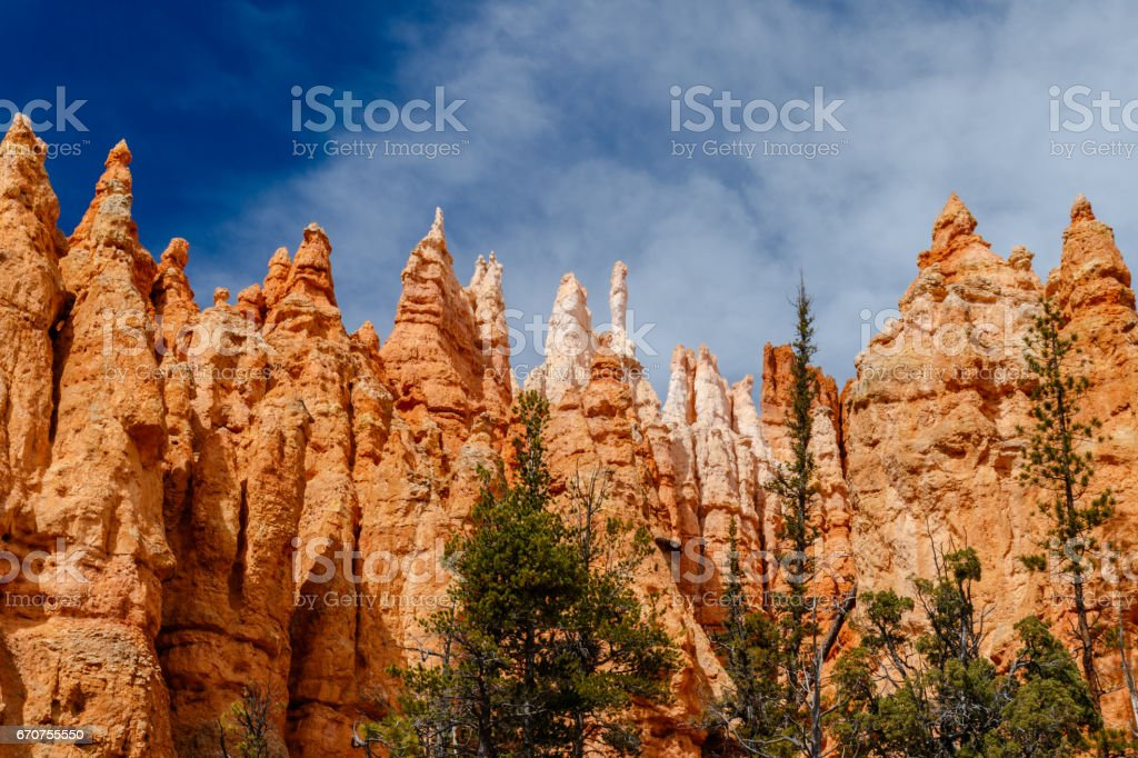 View of Bryce Canyon Hoodoos from the canyon floor stock photo